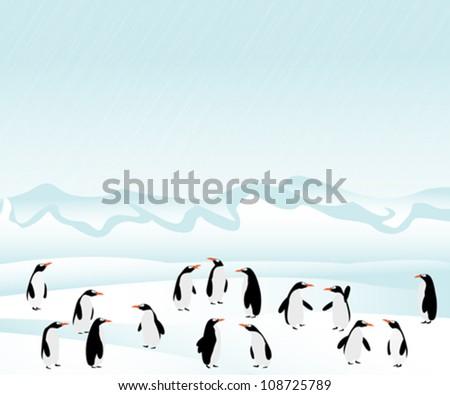 Penguins background. Graphic art illustration