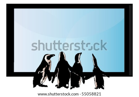 penguins looking at tv