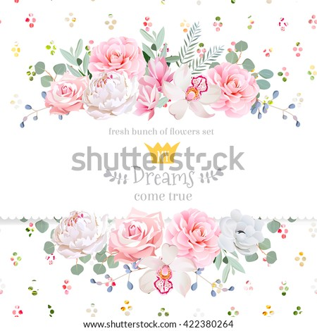 peony  rose  orchid  camellia
