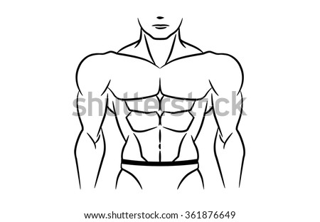 perfect abdominal muscles is