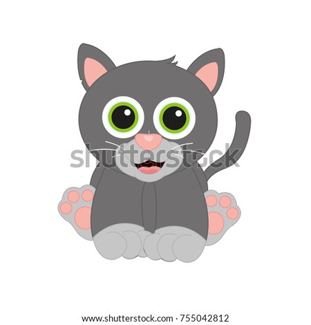 perfect small dark grey cat