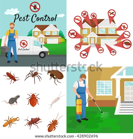 pest control illustration set, professional removal man house indoor and outdoor insect.Worker protective clothes exterminator spraying equipment, chemical toxic pesticide poison kill and prevention