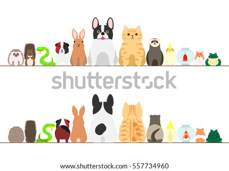 pet animals border set  front