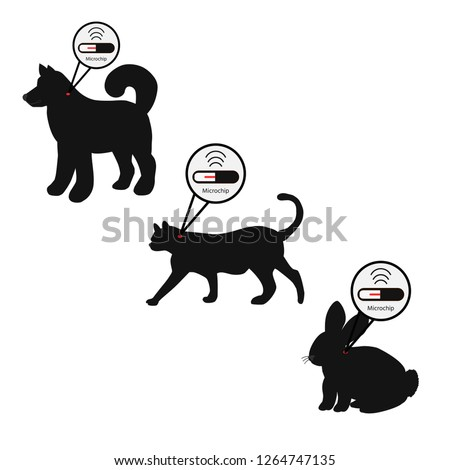Pet services - microchipping. Icon dog, cat and rabbit with microchip pill inside the body and information about owner tagged with a microchip implant.