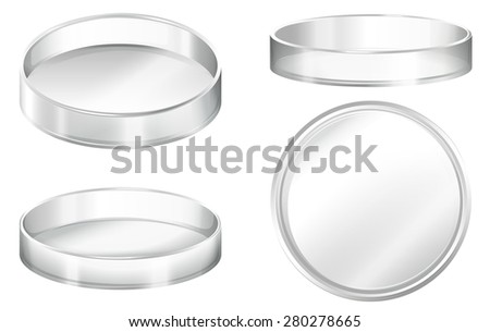Petri dishes on a white background