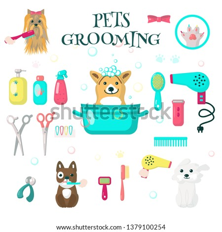 Pets grooming set, vector flat illustration isolated on white background. Cute dogs taking bath, getting hairstyle. Dog baths, haircuts, nail trimming tools and accessories for card, web banner etc.