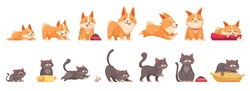 Pets growth stages set of isolated icons cartoon characters of cat and dog at different age vector illustration