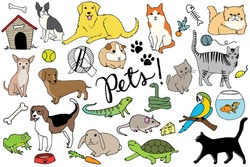 Pets Illustration Set - Hand Drawn Vector Set Including Cats, Dogs, Bird, Hamster, Pet Toys, Fish, Snake, Mouse, Turtle, Frog, Animals, and Paw Prints
