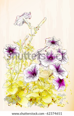 Petunias flowers. Chinese style illustration