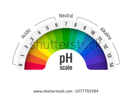 pH value scale chart for acid and alkaline solutions, acid-base balance infographic, vector illustration