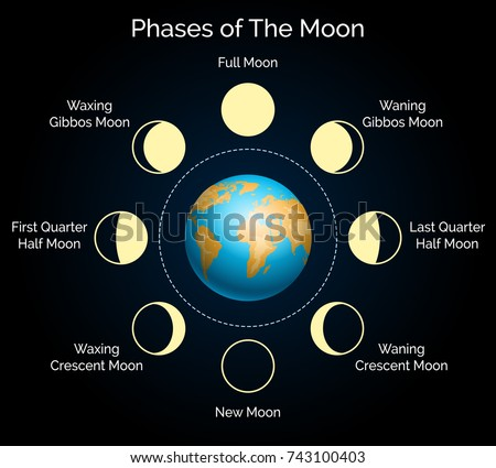 Lunar Phases Download Free Vector Art Stock Graphics Images