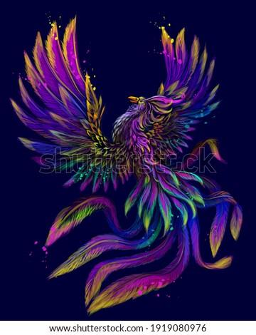 phoenix abstract  color  neon