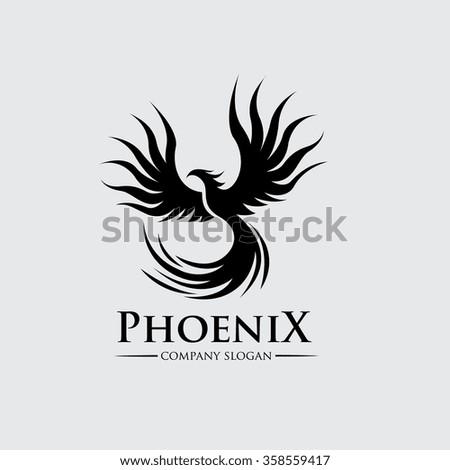 phoenix logo bird logo eagle