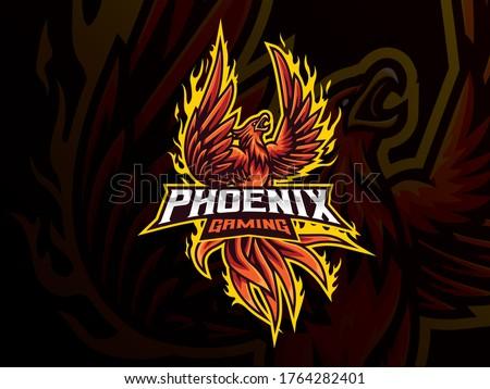 Phoenix mascot sport logo design. Mythology bird mascot vector illustration logo. Red phoenix mascot design, Emblem design for esports team. Vector illustration