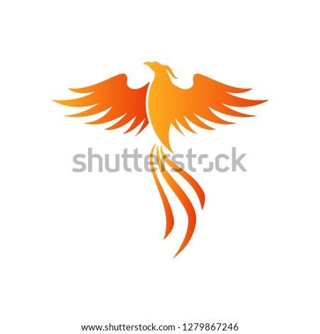Phoenix Vector Illustration - Vector EPS 10 White Isolated