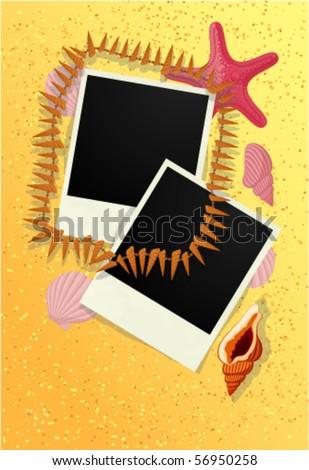 Photo frame with sea shells on beach sand. Vector.