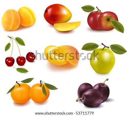 Photo-realistic vector illustration. Apricots,  pears, plums, apples, cherries and mango and  tangerine