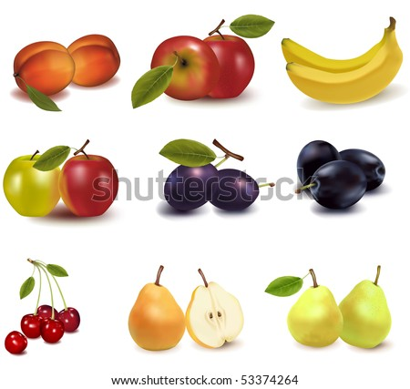 Photo-realistic vector illustration. Big group of different fruit.