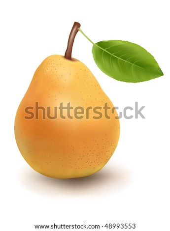 Photo-realistic vector illustration of the ripe pear with the green leaf. - stock vector