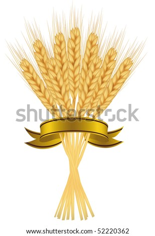 Photo-realistic vector illustration. Package desing. Ears of wheat and ribbons on white