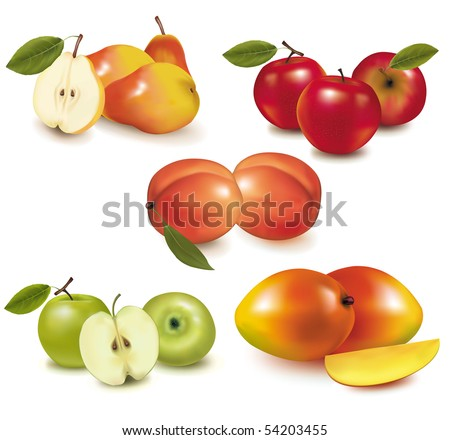 Photo-realistic vector illustration. Pears, apples, peaches and mango.