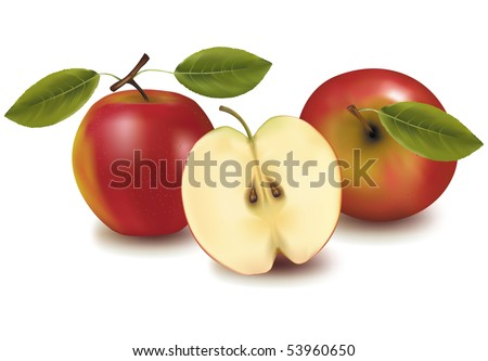 Photo-realistic vector illustration. Red apples with leaves. - stock vector