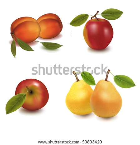 Photo-realistic vector illustration. Two apples, two peaches and two pears.