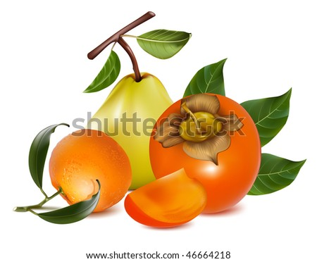 Photo-realistic vector of ripe pears, persimmon and tangerine fruits.