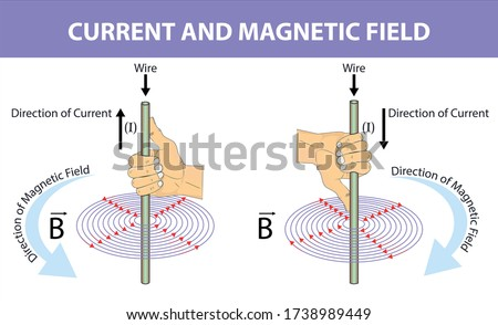 Physics - fleming's right hand rule. magnetic field. direction of current. direction of force. current by direction of magnetic field and force. Fleming's Right Rule infographic