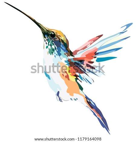 picture of a bird in color