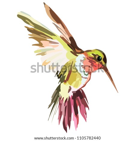 Picture of a colored bird. Vector
