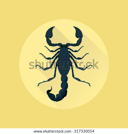 picture of a scorpion on yellow