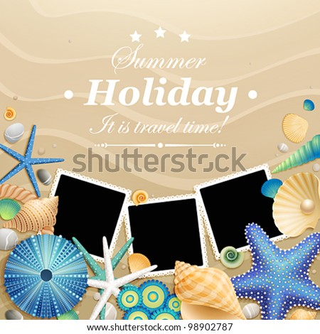 pictures  shells and starfishes