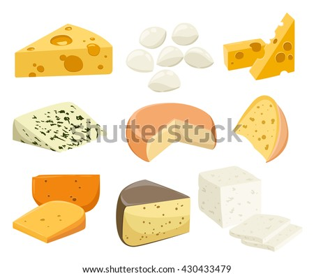 Pieces of Cheese isolated on white. Popular kind of cheese icons isolated. Cheese types. Modern flat style realistic vector illustration