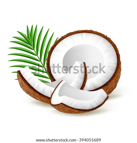 Shutterstock Pieces of coconut with leaves isolated on white background. Realistic vector illustration.