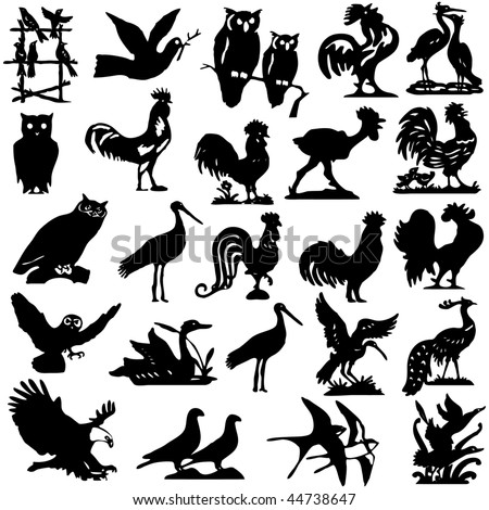 pieces of detailed vectoral bird silhouettes. - stock vector