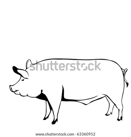 pig black and white vector illustration