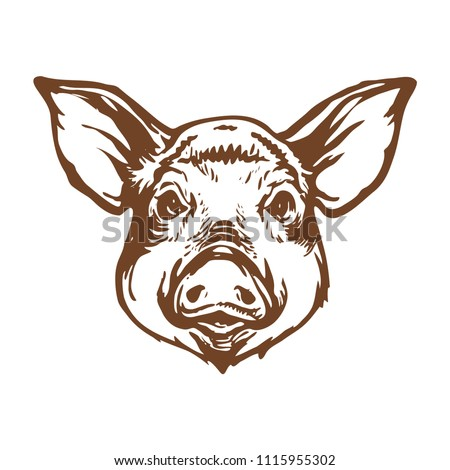 Pig head line art ink sketch stock vector illustration design for logo, tattoo and coloring book