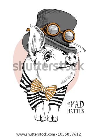 pig in a in a striped cardigan