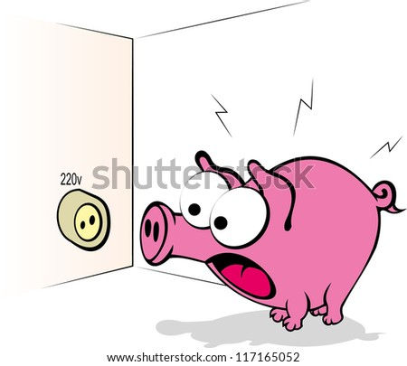 pig looks at the power outlet