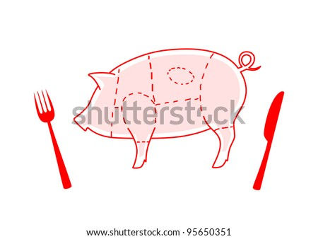 Pig on white background
