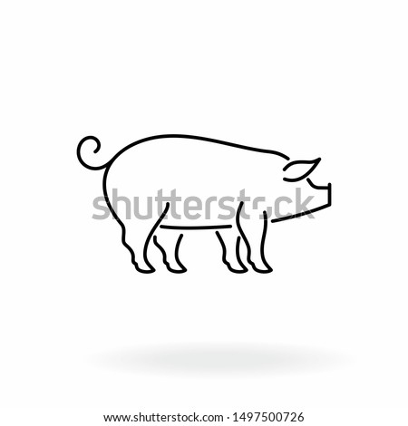 Pig outline icon. Livestock vector illustration. Farm animal symbol isolated on white background.