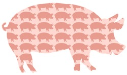 Pig Pork Pattern. Silhouettes of pigs background. Isolated vector on white background.
