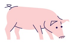 Pig side view flat vector illustration. Livestock farming, domestic animal husbandry design element with outline. Pork meat production logo. Cartoon piglet isolated on white background