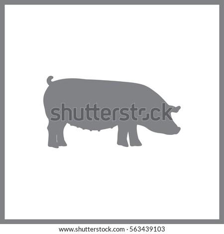 pig  trendy simple vector