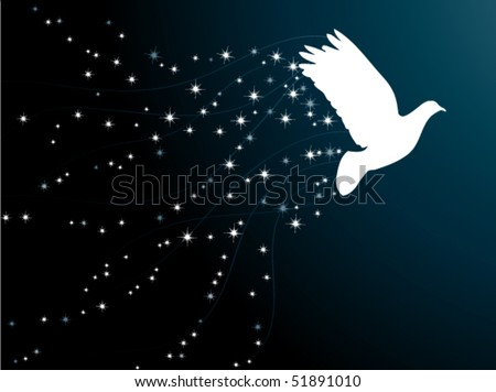 Pigeon in the star sky