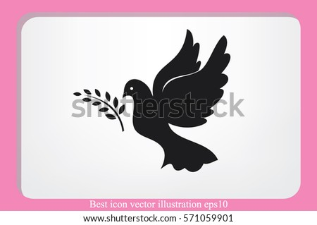 pigeon olive leaf icon vector