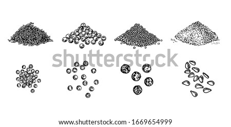 Piles of spices. Black pepper peas, sesame seeds, poppy seeds, caraway seeds. Spices set. Natural seasoning and cooking ingredient. Vector line art illustration on white background