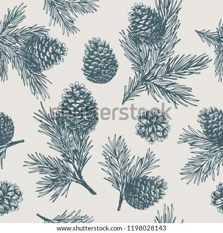 Pine cones seamless pattern. Christmas gift wrapping.