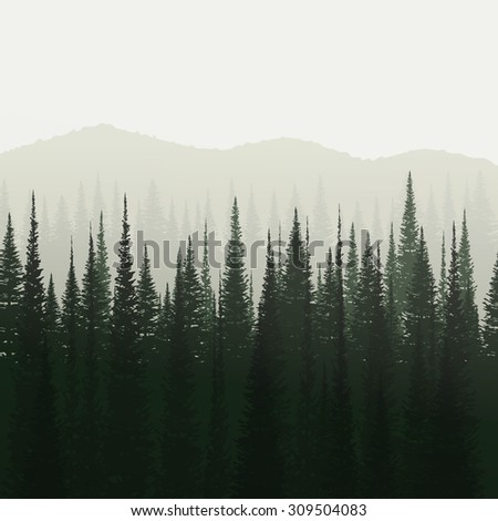 pine forest and mountain
